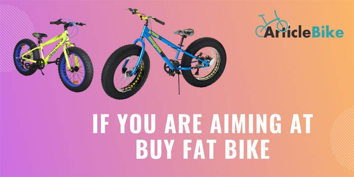 If You Are Aiming at Buy Fat Bike