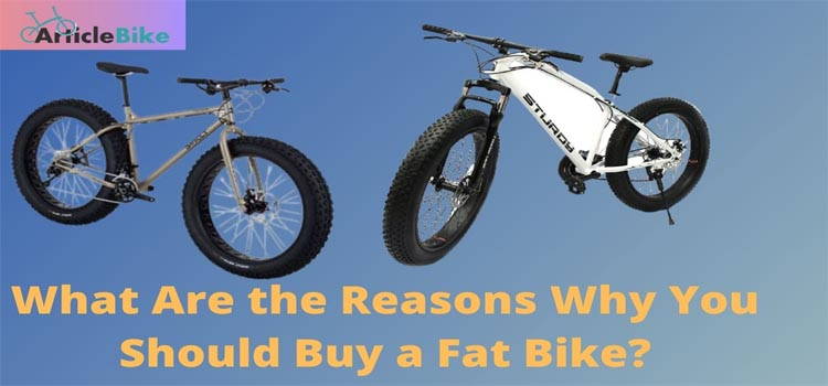 What Are the Reasons Why You Should Buy a Fat Bike_