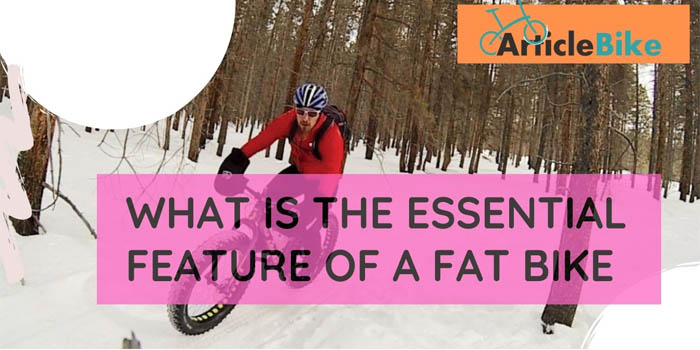 What Is the Essential Feature of a Fat Bike