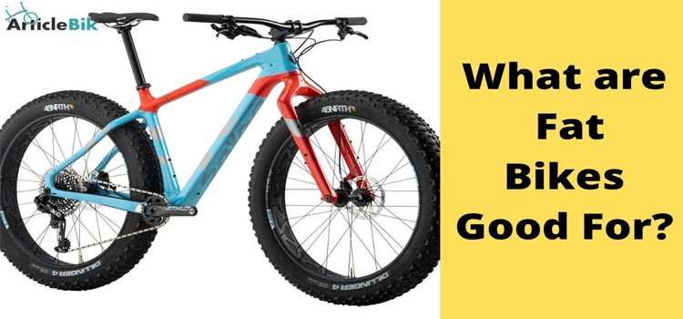 What are Fat Bikes Good For_