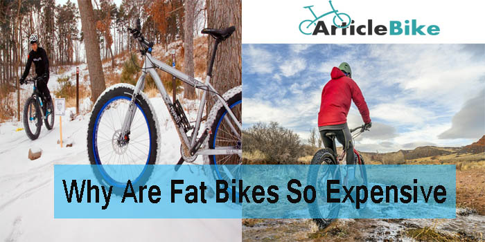 Why Are Fat Bikes So Expensive