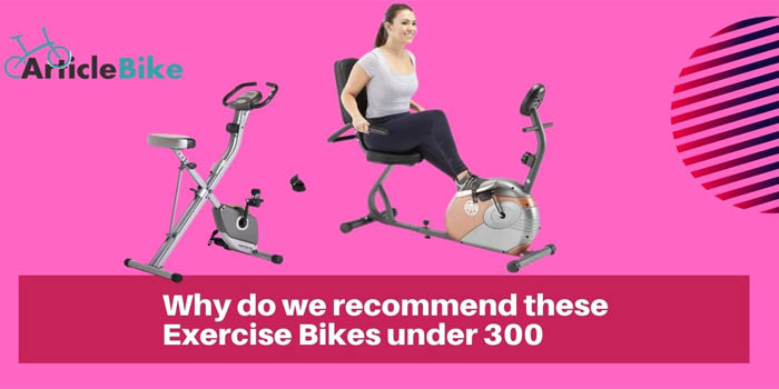 Why do we recommend these Exercise Bikes under 300