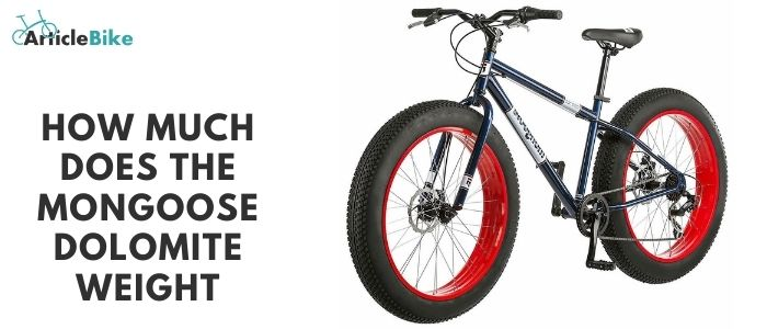 How much does the mongoose dolomite weight