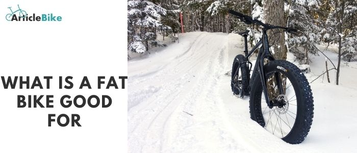 What is a fat bike good for