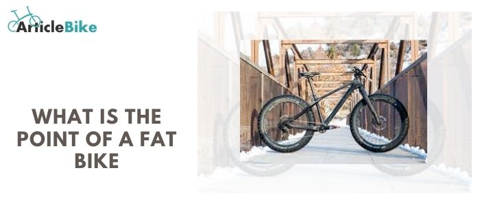What is the point of a fat bike