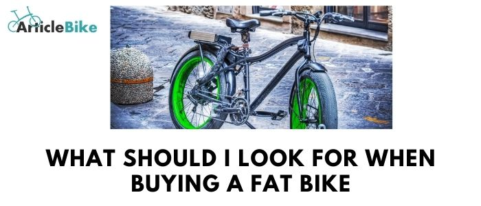 What should I look for when buying a fat bike